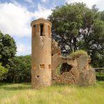 Cafetal Angerona, Kuba: Archäologische Grabungen